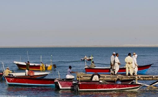 صید و صیادی در بندر صیادی پزم تیاب+عکس
