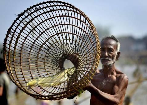 ماهیگیری در جشنواره مگ بیهو در روستای پانیباری هند/ANSA