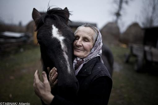 ارسال از لهستان - پرتره زن روستایی و اسب
