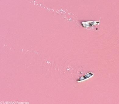 دریاچه صورتی-این دریاچه که در کشور سنگال قرار دارد بعلت وجود رنگدانه های صورتی فراوان در جلبک سالینا به این رنگ زیبا درآمده است . این دریاچه یکی از رودخانه با حجم نمک فراوان در دنیا شناخته شده است .