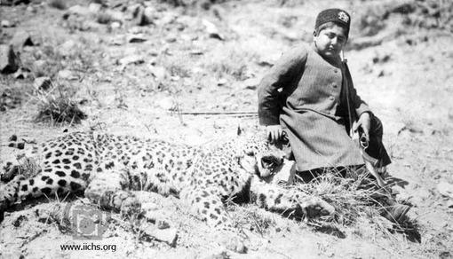 [2411- 1ع]<br /> احمد شاه نوجوان که با شجاعت دست بر سر پلنگی شکار شده دارد و عکسی به یادگار گرفته است