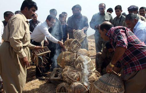 بیش از ۵۰ شکارچی کهنه کار مهابادی، با هدف آشتی با طبیعت، در یک اقدام نمادین با رهاسازی ۵۰ قطعه کبک در دامان طبیعت، به طور دسته جمعی با شکار خداحافظی کرده و به همیاران محیط زیست پیوستند. /IRNA