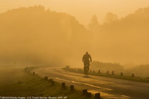 صبح پاییزی و دوچرخه سواری دلچسب در پارک ریچموند در لندن
