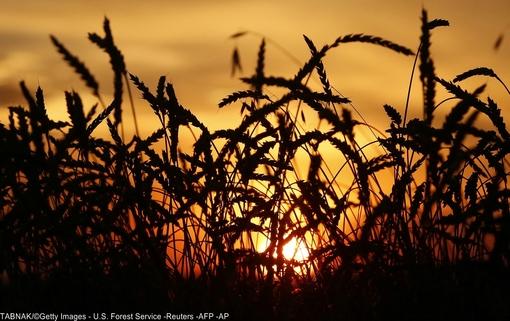 غروب آفتاب اولین روز پاییزی در روستای Solgon، جنوب غربی  کراسنویارسک، روسیه