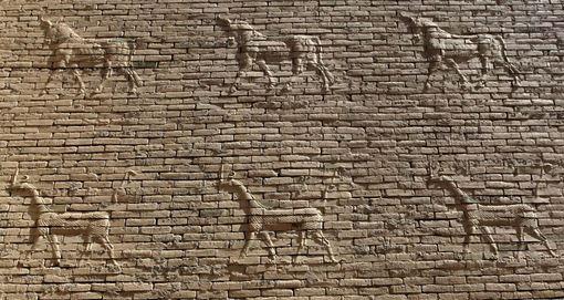 آثار باستانی منحصر بفرد از دوران بابِل در نزدیکی حله در جنوب بغداد که ممکن است با توجه به تهدیدات تکفیریها در این منطقه، بعدها در معرض آسیب و نابودی قرار گیرد./Reuters