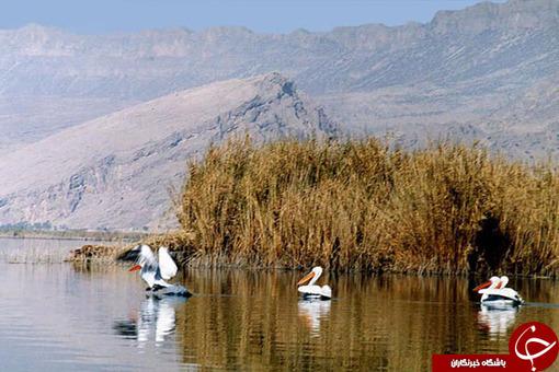 درياچه پرشيان / استان فارس