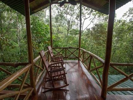خانه درختی در کاستاریکا