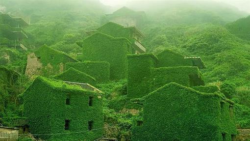روستای ماهیگیران در مجمعالجزایر شنگسی در چین که ساکنانش آن را ترک کردهاند و طبیعت سبز بر آن غلبه کرده است.