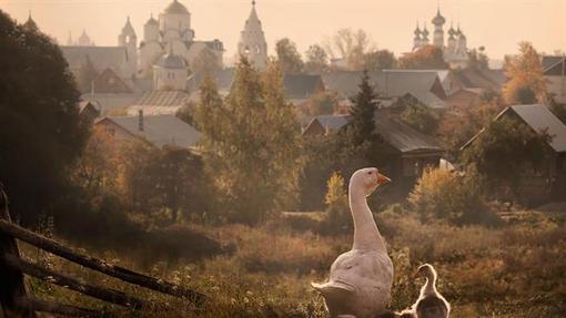 سوزدال روستایی در منطقۀ اوبلاست ولادیمیر در روسیه