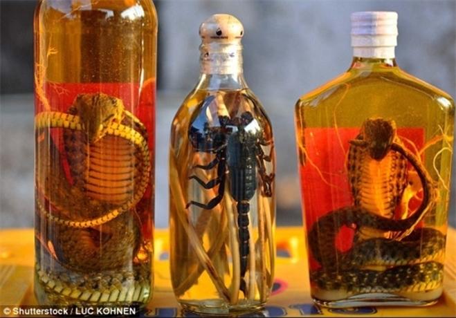 نوشیدنی مار و عقرب: مردم روستایی در ویتنام زهر مار و عقرب را توسط الکل میگیرند و برای درمان مشکلات جسمی نظیر روماتیسم و کمردرد از آن استفاده میکنند.