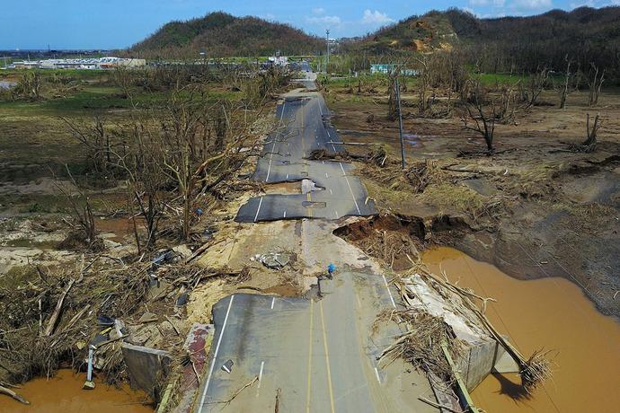 مردی در پورتوریکو پس از طوفان ویرانگر، در جاده ای که ویران شده است،دوچرخه می راند.