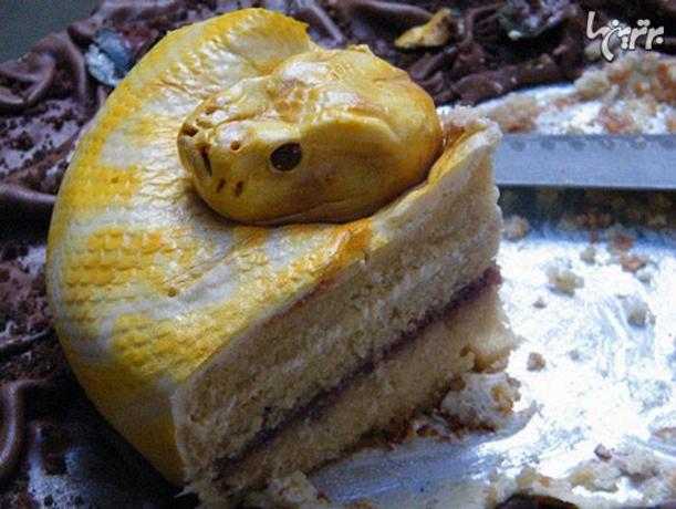 کیک مار