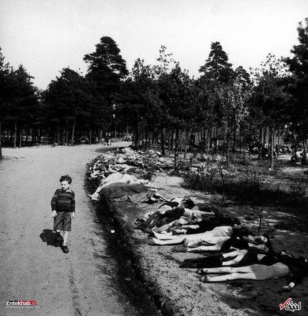 1945: یک پسر بچه در حال عبور از کنار جسد صدها زندانی در اردوگاه کار اجباری برگن بلزن آلمان