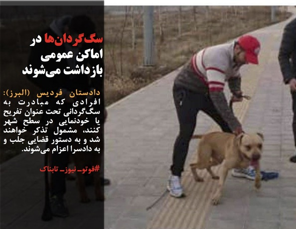 دادستان فردیس (البرز): افرادی که مبادرت به سگگردانی تحت عنوان تفریح یا خودنمایی در سطح شهر کنند، مشمول تذکر خواهند شد و به دستور قضایی جلب و به دادسرا اعزام میشوند.