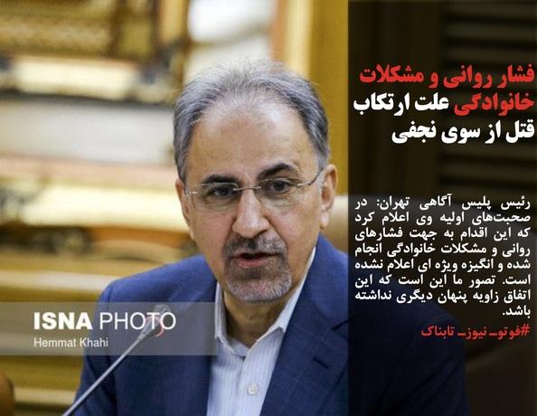 رئیس پلیس آگاهی تهران: در صحبتهای اولیه وی اعلام کرد که این اقدام به جهت فشارهای روانی و مشکلات خانوادگی انجام شده و انگیزه ویژه ای اعلام نشده است. تصور ما این است که این اتفاق زاویه پنهان دیگری نداشته باشد.