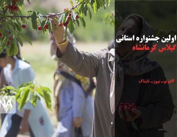 اولین جشنواره استانی گیلاس کرمانشاه