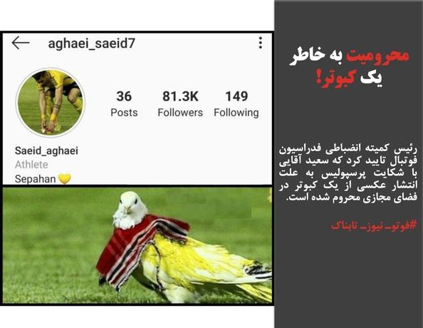 رئیس کمیته انضباطی فدراسیون فوتبال تایید کرد که سعید آقایی با شکایت پرسپولیس به علت انتشار عکسی از یک کبوتر در فضای مجازی محروم شده است.