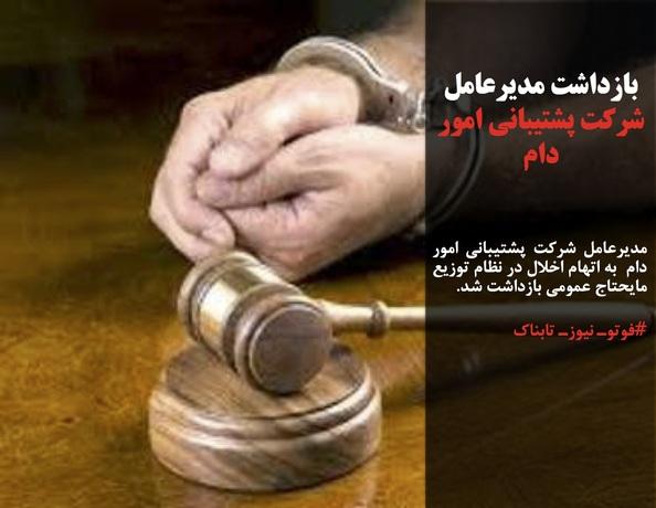 مدیرعامل شرکت پشتیبانی امور دام  به اتهام اخلال در نظام توزیع مایحتاج عمومی بازداشت شد.