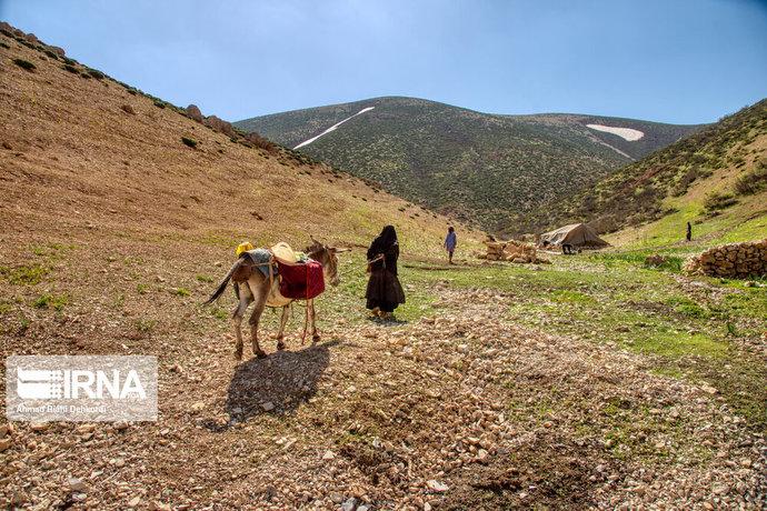 زندگی عشایر بختیاری در روزهای پاییزی / عکس