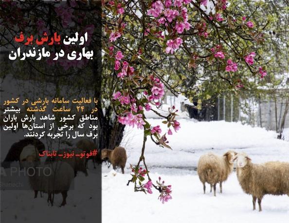 با فعالیت سامانه بارشی در کشور در ۲۴ ساعت گذشته بیشتر مناطق کشور شاهد بارش باران بود که برخی از استانها اولین برف سال را تجربه کردنند.