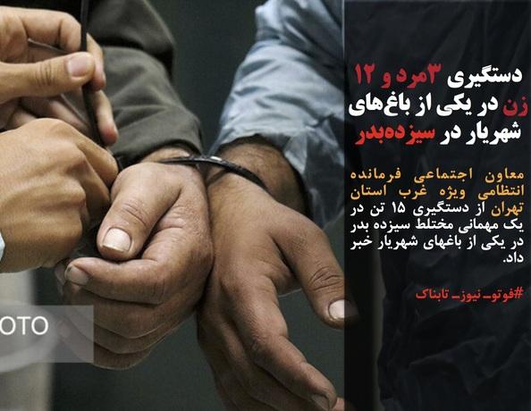 معاون اجتماعی فرمانده انتظامی ویژه غرب استان تهران از دستگیری ۱۵ تن در یک مهمانی مختلط سیزده بدر در یکی از باغهای شهریار خبر داد.
