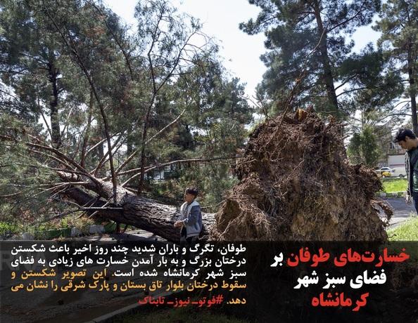 طوفان، تگرگ و باران شدید چند روز اخیر باعث شکستن درختان بزرگ و به بار آمدن خسارت های زیادی به فضای سبز شهر کرمانشاه شده است. این تصویر شکستن و سقوط درختان بلوار تاق بستان و پارک شرقی را نشان می دهد. #فوتوـ نیوزـ تابناک