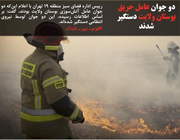 رییس اداره فضای سبز منطقه ١٩ تهران با اعلام اینکه دو جوان عامل آتشسوزی بوستان ولایت بودند، گفت: بر اساس اطلاعات رسیده، این دو جوان توسط نیروی انتظامی دستگیر شدهاند.